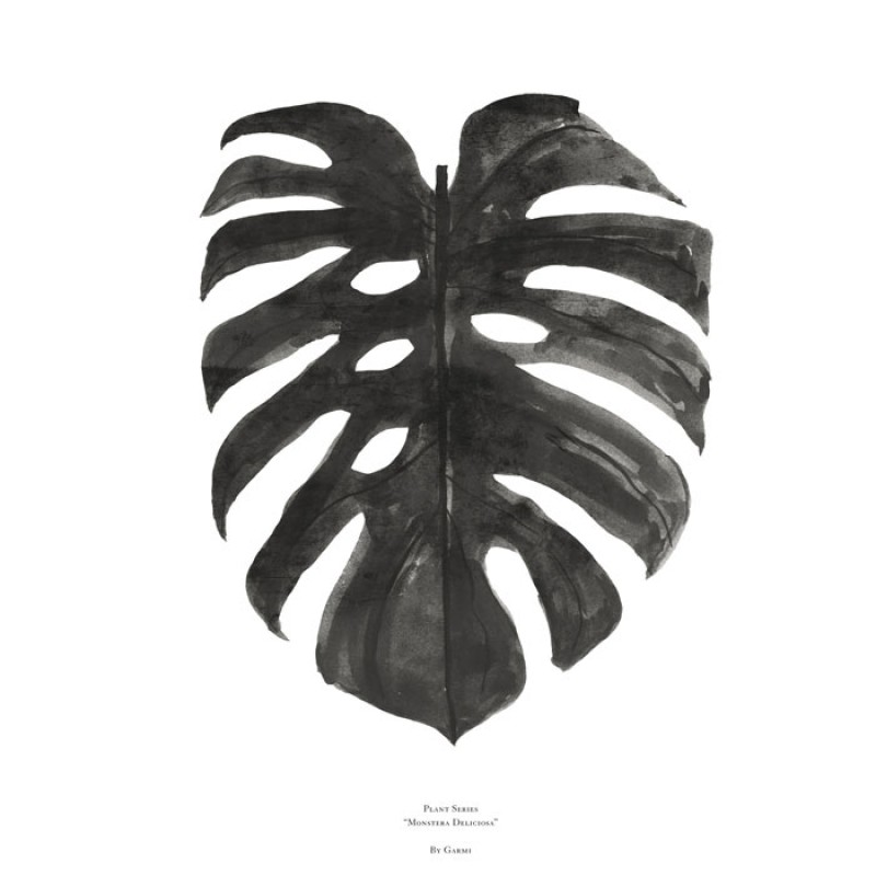 Skandivis By Garmi Monstera Deliciosa Print By Garmi - Black Poster