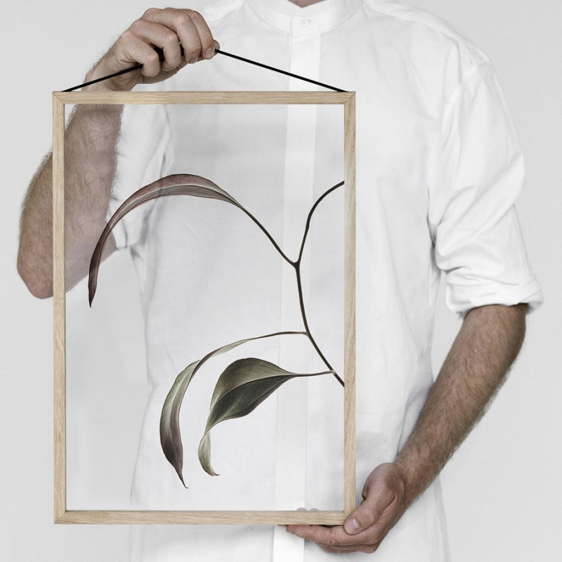 Skandivis Floating Leaves Print 07,Size A4